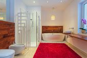 Modern Bathroom With Carpet