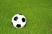 picture of manicured lawn  - Soccer ball on a manicured green lawn - JPG