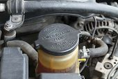 Power Steering Fluid Cap