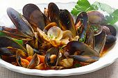 stock photo of clam  - Close - JPG