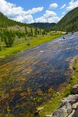 Yellowstone National Park - Firehole River