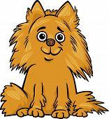 Pomeranian Dog Cartoon Illustration