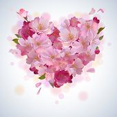 image of cherries  - Vector spring background with gentle heart from cherry flowers and petals - JPG