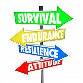 image of survival  - Survival Endurance Resilience Attitude Road Signs Arrows Direction - JPG