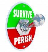 stock photo of survival  - Survive Perish Toggle Switch Win Lose Survival - JPG
