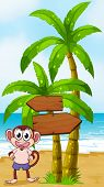 Illustration of a beach with a monkey near the arrow signages