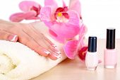 Beautiful woman hands with french manicure and flowers on table on white background