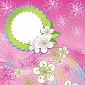 Spring Design Template.cherry Flowers And Line In Background
