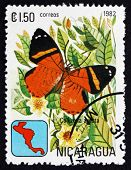 Postage Stamp Nicaragua 1982 Callizona Acesta, Butterfly