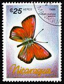Postage Stamp Nicaragua 1986 Palaeochrysophonus Hippothoe, Butte