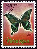 Postage Stamp Nicaragua 1986 Alpine Black Swallowtail, Butterfly