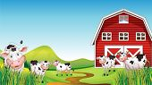picture of dairy barn  - Illustration of a dairy farm - JPG