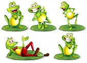 stock photo of cute frog  - Illustration of frogs in various poses - JPG