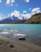 Sandy Beach Lake Pehoe in the national park Torres del Paine, Chile. Majestic rocks Los Kuernos. The
