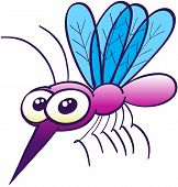 stock photo of mosquito  - Cute purple mosquito with big bulging eyes - JPG