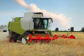 Wheat Field With Harvester
