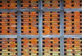Brick Wall Of A Half Timbered House