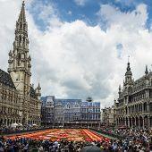 Floral Carpet 2014 In Brussels
