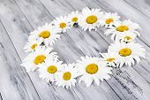 Chamomile wreath on grey wooden background