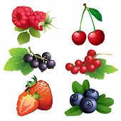 Ripe Strawberry, Raspberry, Cherry, Blackberry