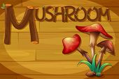 Illustration of a wooden frame with a mushroom