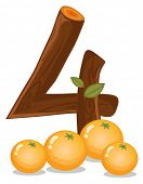 Illustration of the four oranges on a white background