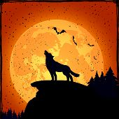 image of wolf moon  - Grunge Halloween night background with wolf and full Moon illustration - JPG