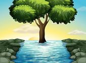 Illustration of a big tree in the middle of the river