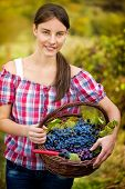 young woman in vineyard with basket of grapes