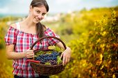 smiling  woman with basket full of grapes