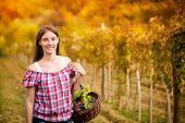 smiling young woman in vineyard