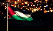 Palestine Flag City Light Night Bokeh Background 3D