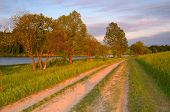 Evening summer landscape. The road near the pond and trees