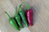 Red chilli with a group of green chilli, Being Different