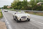 Austin Healey 100 S (1955) In Rally Mille Miglia 2013