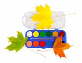 Colored Paints And Brushes For Drawing Isolated On A White Background