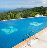 tropical swimming pool with coconut tree
