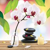 Spa Composition With Zen Stones