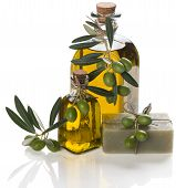 Olive Soap With Oil