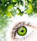 Постер, плакат: Green Vision