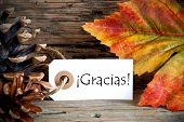 Fall Label With Gracias