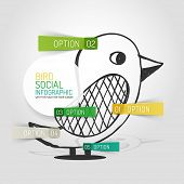 Vector hand drawn social bird design and infographic option stickers, business info diagram