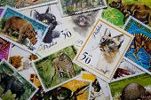 World Stamps: Animals