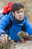 Young male backpacker hiking in forest