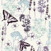 hand drawn herbs pattern