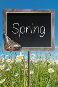 Chalkboard With Text Spring
