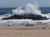 Waves at Asbury Park