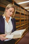 stock photo of librarian  - Serious librarian reading a book in library - JPG