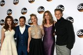 LOS ANGELES - JAN 14:  Elena Satine, Nick Wechsler, Karine Vanasse, Emily VanCamp, Gabriel Mann at the ABC TCA Winter 2015 at a The Langham Huntington Hotel on January 14, 2015 in Pasadena, CA