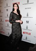 LOS ANGELES - JAN 11:  Laura Prepon at the The Weinstein Company / Netflix Golden Globes After Party at a Beverly Hilton Adjacent on January 11, 2015 in Beverly Hills, CA